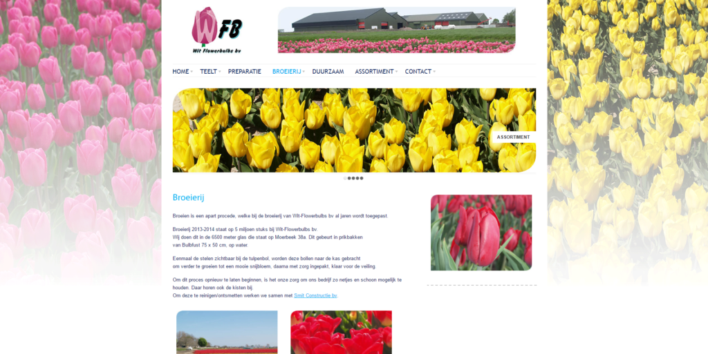 GonBa website voor Wit Flowerbulbs