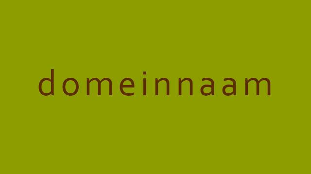 domeinnaam via GonBa